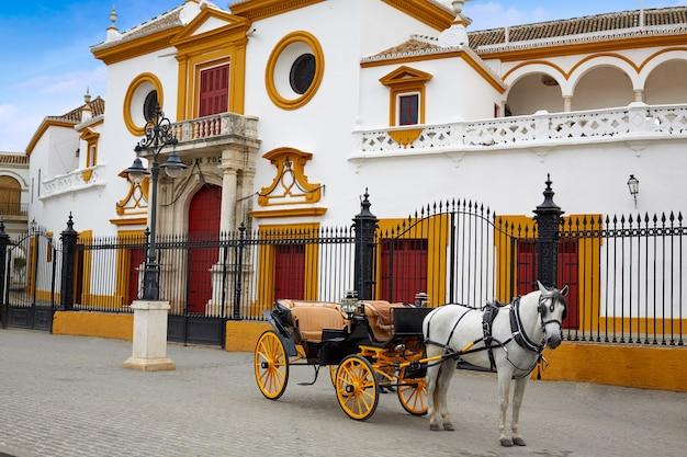 Seville real maestranza bullring plaza toros Premium Photo
