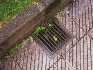 Sewer prision Free Photo