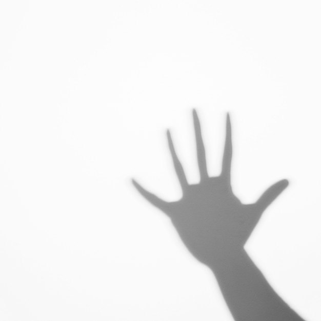Shadow of human palm on white backdrop Free Photo