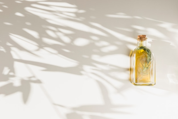 Shadow of leaves on wall with closed olive oil bottle Free Photo