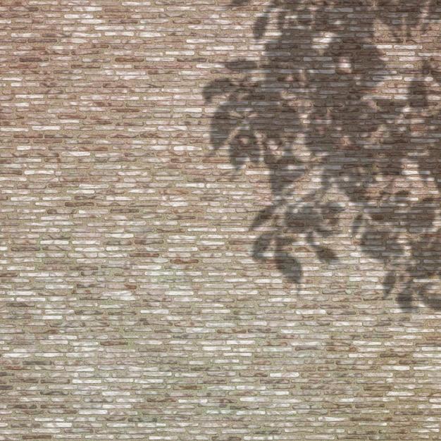 Тень листьев на фоне кирпичной стены Бесплатные Фотографии