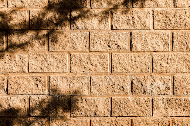 Shadow of a tree on the brick wall Free Photo