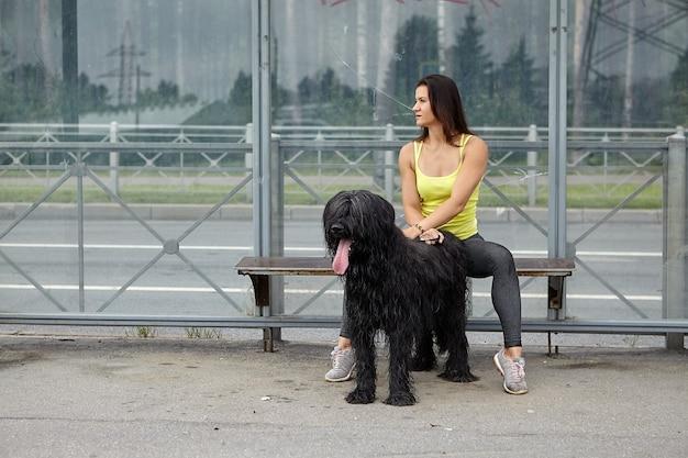 얽히고 설킨 검은 브리아 드 개와 여성 주인은 도시 거리에서 트램을 기다리는 동안 대중 교통 정류장에 앉아 있습니다. 프리미엄 사진