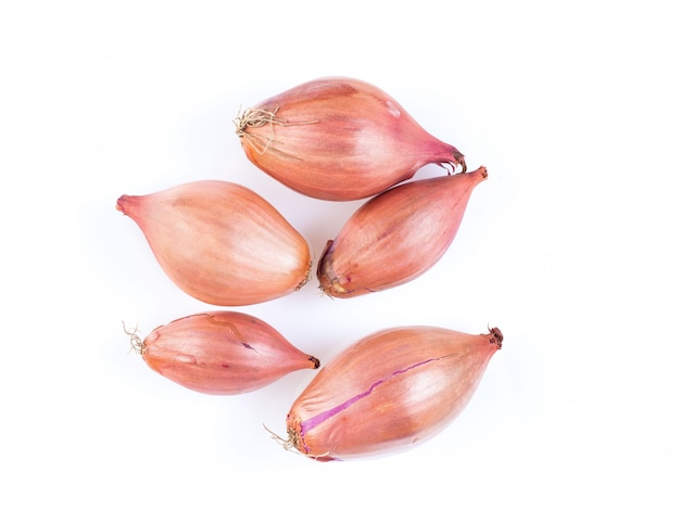 Shallots onion on white background, bulbs, top view Premium Photo