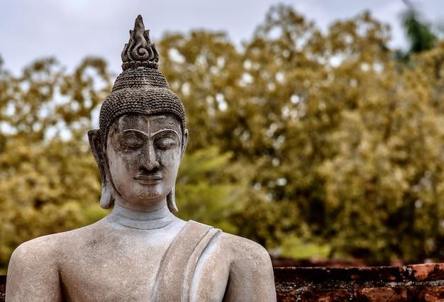 Неглубокий снимок старой статуи будды Бесплатные Фотографии