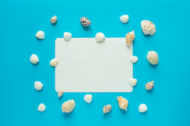 Shell on the blue background with blank space for text Premium Photo