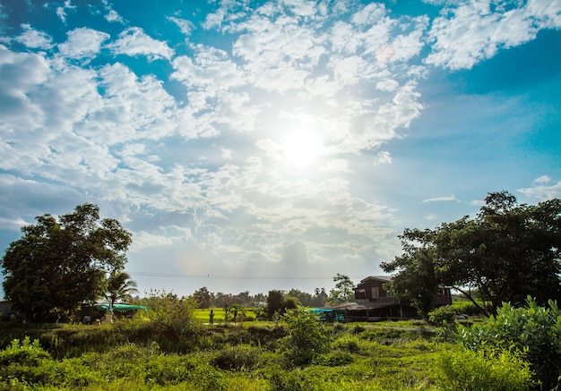 Shining sun with lens flare. blue sky with clouds in rural life of thailand Premium Photo