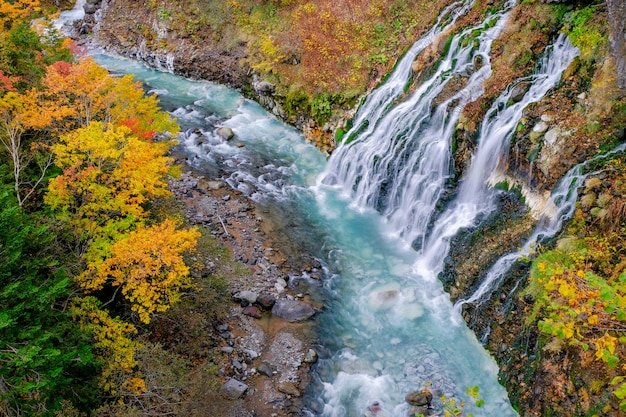 Shirahige waterfall in fall and autumn season, hokkaido, japan Premium Photo