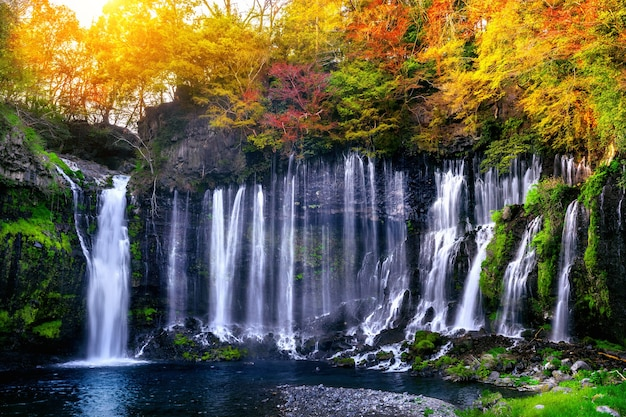 Водопад шираито в японии. Бесплатные Фотографии