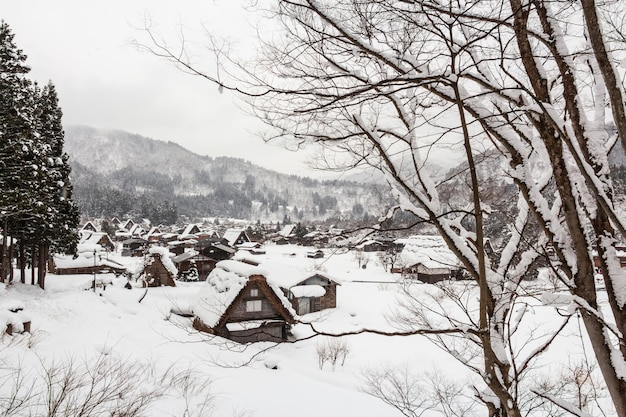 Shirakawago village with snow fall in winter season Premium Photo