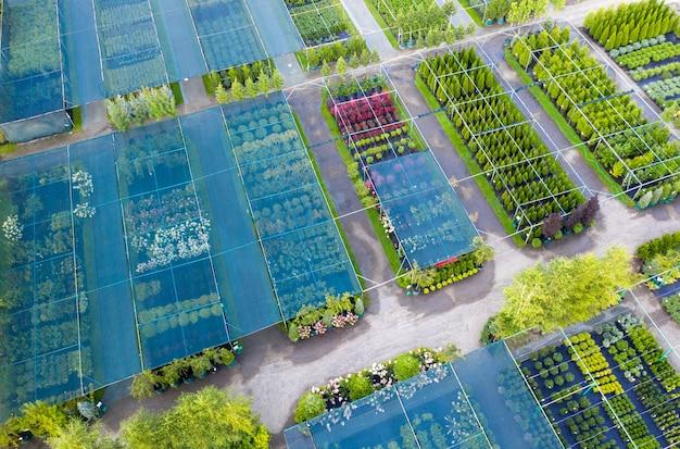 Shop or nursery of ornamental plants. drone view Premium Photo