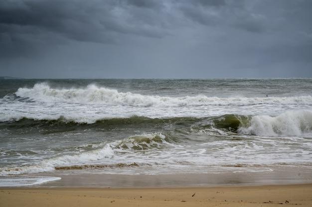 Colpo della spiaggia e delle onde della sunshine coast del queensland, in australia Foto Gratuite