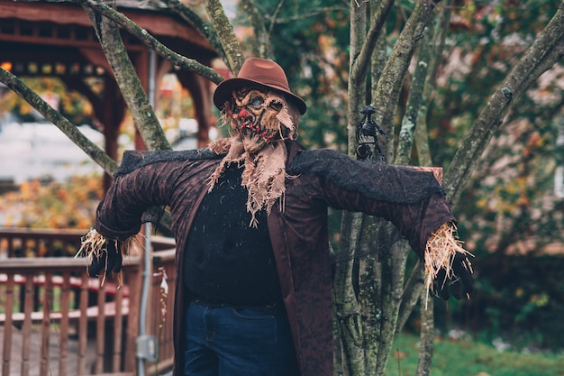 Shot of a creepy scarecrow with a hat beside a tree Free Photo