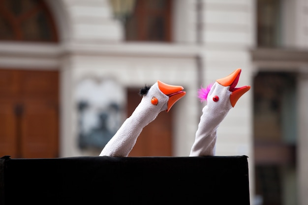Show with the geese puppets Premium Photo