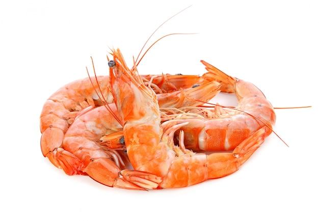 Shrimps on a white Premium Photo