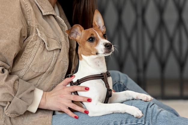 Вид сбоку на собаку, которую держит женщина Бесплатные Фотографии
