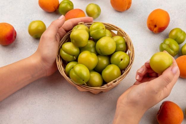 緑の梅と白い背景の上のアプリコットと梅のパターンと梅全体のバスケットを保持している女性の手の側面図 無料写真