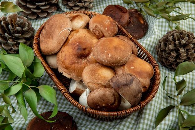 Вид сбоку свежих грибов в плетеной корзине и шишек с зелеными листьями на клетчатой ткани Бесплатные Фотографии