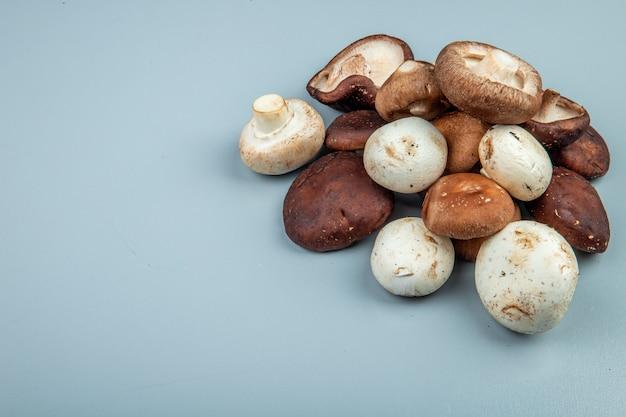 Вид сбоку свежих грибов на голубом с копией пространства Бесплатные Фотографии