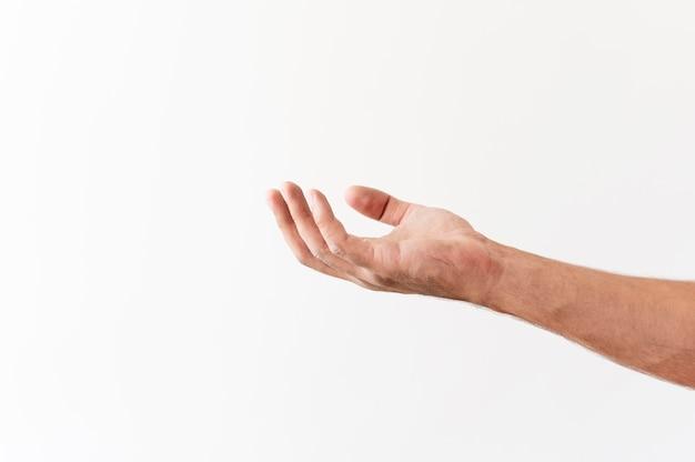 식품 기부를 요청하는 손의 측면보기 무료 사진