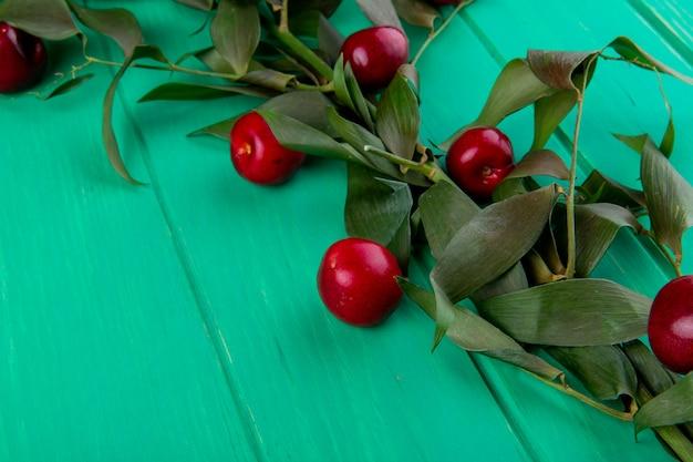 緑の木に緑の葉と赤い熟したチェリーの側面図 無料写真