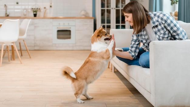 Взгляд со стороны женщины на кресле высоко-fiving ее собака Бесплатные Фотографии