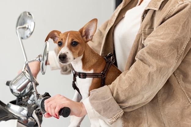 Взгляд со стороны женщины на самокате с ее собакой Бесплатные Фотографии