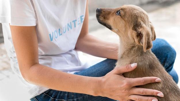 Vista laterale del cane da salvataggio che ama l'affetto che riceve dalla donna al rifugio Foto Gratuite
