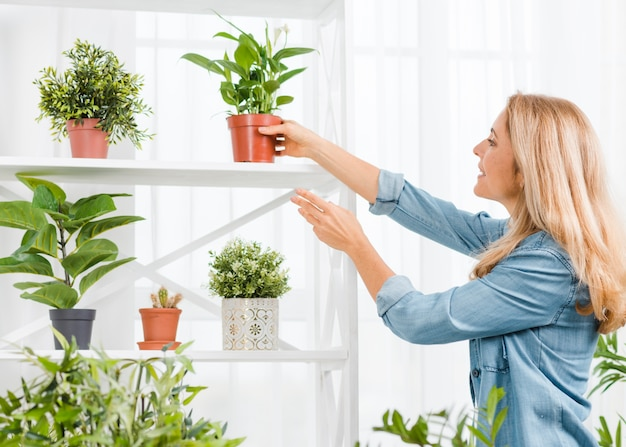 Side view woman arranging flowers pot Free Photo