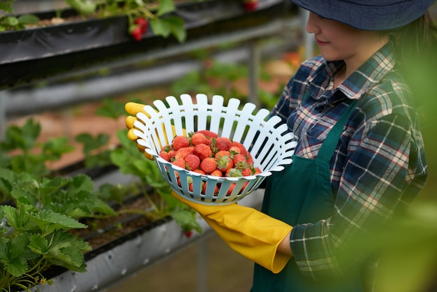 Side view of young female farmer holding a bowl of strawberries Free Photo
