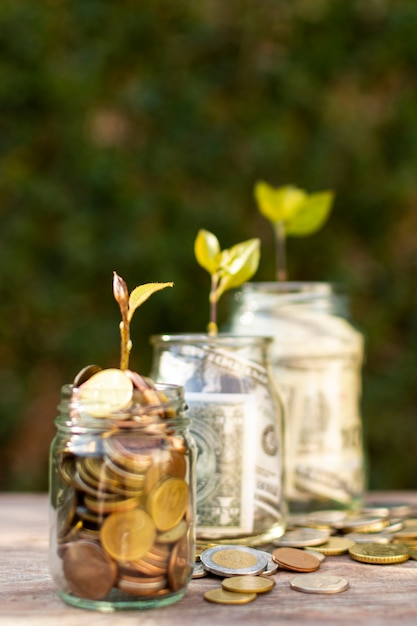 Sideways jars filled with money and plants on top of them Free Photo