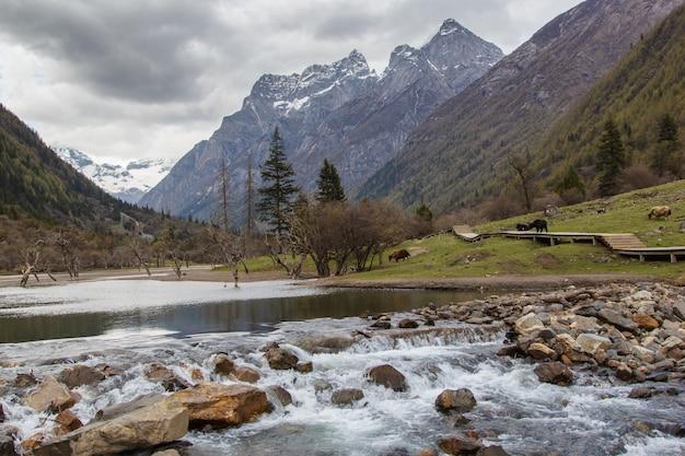 小さな湖とマウントsiguniangは中国西部のqionglai山脈の最高峰です Premium写真