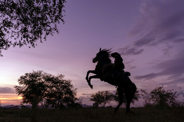 Silhouette the cowboy riding on a mountain with an yellow sky Premium Photo