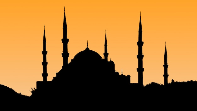 Silhouette of the old town - sultanahmet mosques in setting sun in istanbul turkey. Premium Photo