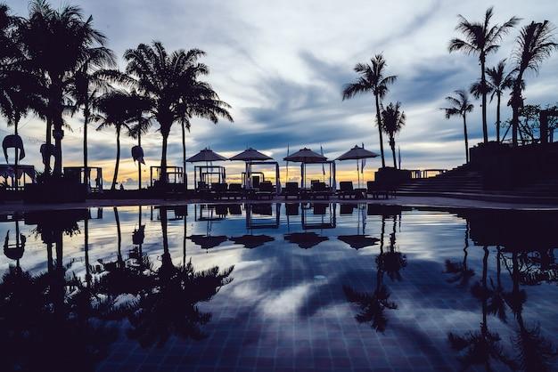Silhouette palm tree with umbrella Free Photo