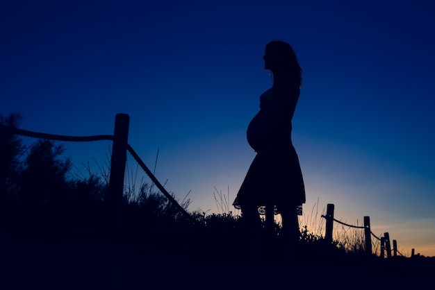 Silhouette of pregnant woman at sunset with solid color background. Premium Photo