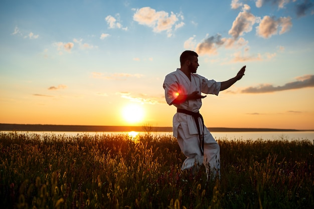 Silhouette of sportive man training karate in field at sunrise. Free Photo