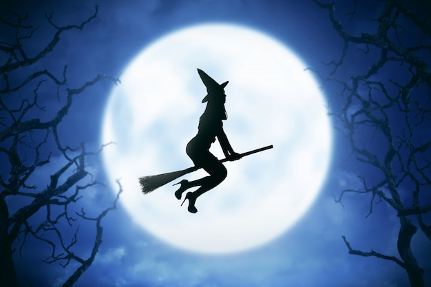 Silhouette of witch woman riding magic broom Premium Photo