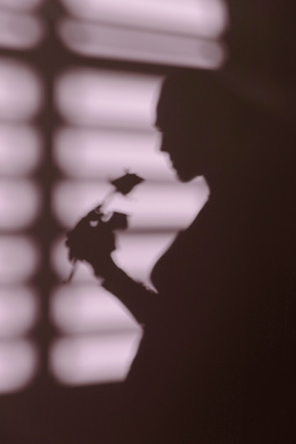 Sagoma di donna a casa con le ombre delle finestre Foto Gratuite