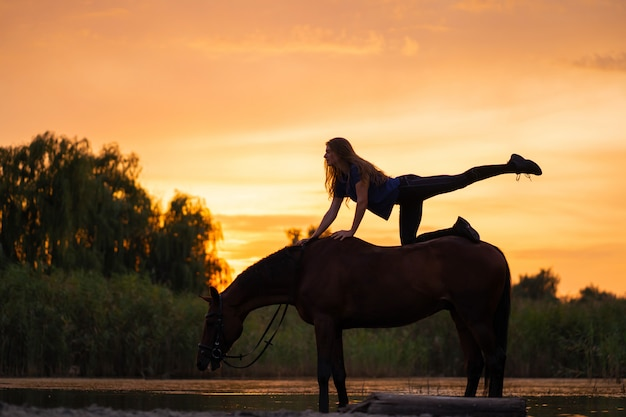 Silhouetted a slender girl practicing yoga on horseback, at sunset the horse stands in the lake, c Premium Photo