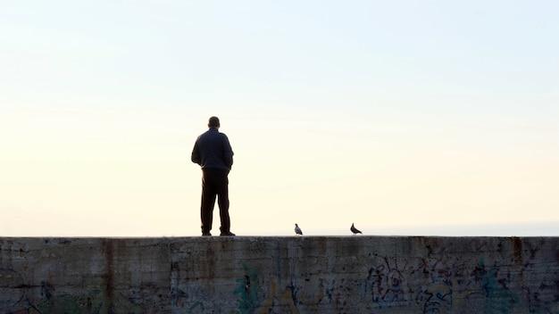 Силуэты человека и голубей, стоящих на пирсе на закате Premium Фотографии