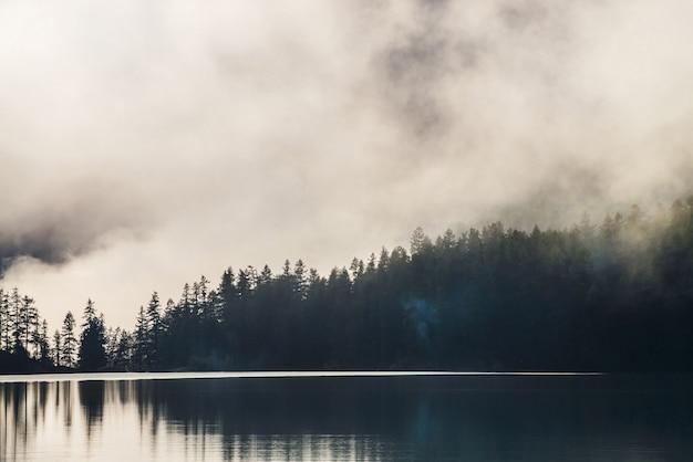 Силуэты заостренных деревьев на склоне холма вдоль горного озера в густом тумане. отражение сосен в спокойной воде горного озера. альпийский спокойный пейзаж рано утром. призрачные атмосферные пейзажи. Premium Фотографии