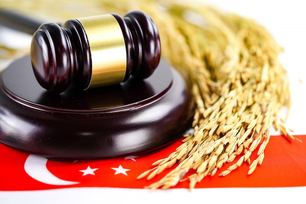 Singapore flag and judge hammer with gold grain from agriculture farm Premium Photo