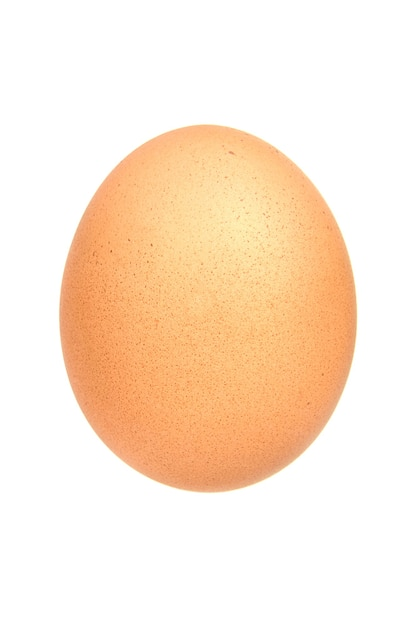 single-brown-chicken-egg-isolated-white_161301-638.jpg