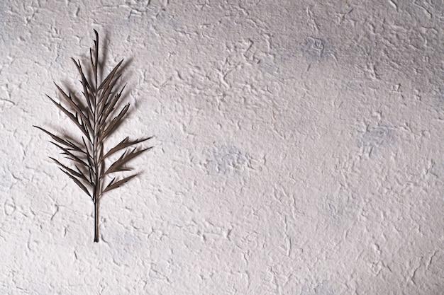 Single dried leaf on white rustic background Photo | Premium