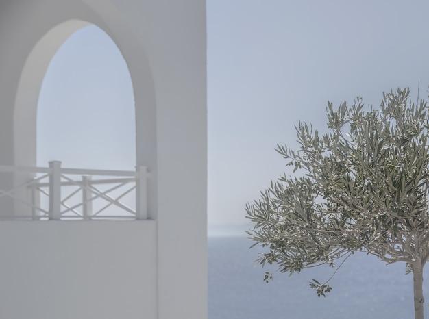 美しい海の近くの霧で覆われた白い建物の近くの緑の葉を持つ単一の木 無料写真