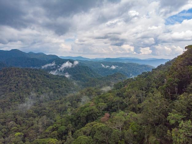 シンハラジャ熱帯雨林自然保護区サンセットマウンテンズジャングルエンシェントフォレストのスリランカ航空写真 Premium写真