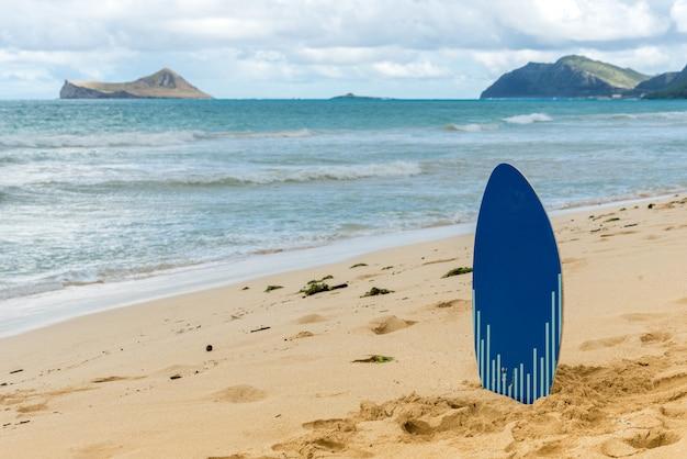 Skim board on waimanalo beach on oahu Premium Photo