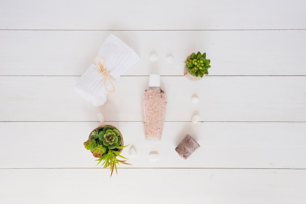 Skin care tools and flower pots on wooden table Free Photo
