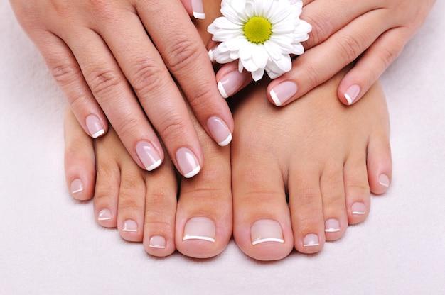 Skincare di una bellezza femminile piedi con fiori di camomilla Foto Gratuite